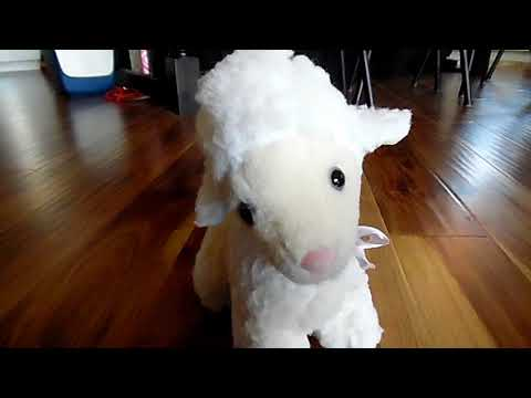 A Review on the Musical Lamb from Lanuage Nursery