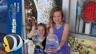 How to Get Your Family More Involved in the Aquarium Hobby