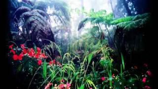 Earth Trybe - Jungles of Ashi Maaru