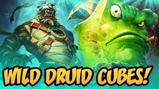 Wild Druid Cubes! | Saviors of Uldum | Hearthstone