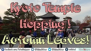 Kyoto Temple Hopping! Autumn Leaves in Ginkaku, Kiyomizu, and Tofukuji