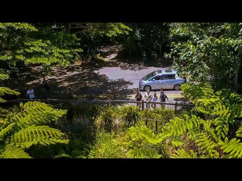 Queensland Road Trips - One Day Self Drive Trips From Cairns & Port Douglas
