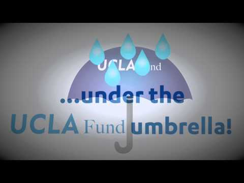 UCLA Fund: Fund Umbrella