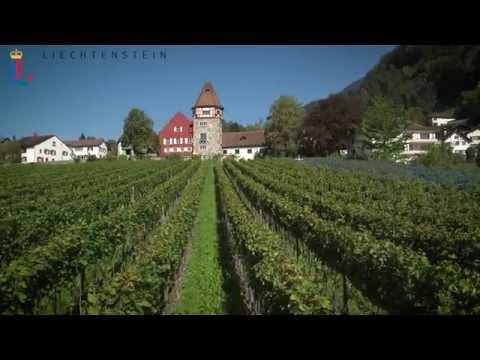 Das Fürstentum Liechtenstein - Kurzfassung