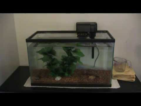 setting up a top fin 10 gallon aquarium starter kit -