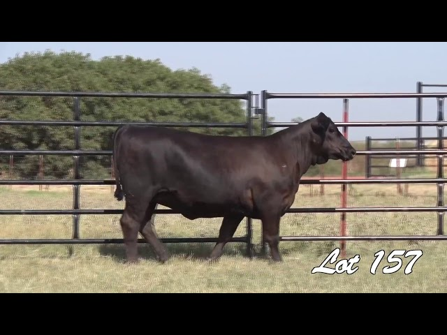 Pollard Farms Lot 157