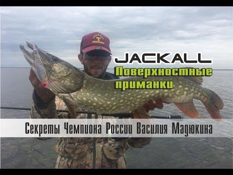 Лучшие воблеры для рыбалки на щуку. Поверхностные приманки Jackall. Рыбалка с Василием Мадюкиным.