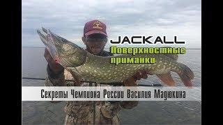 видео В Киеве открыли весенний сезон рыболовного спорта