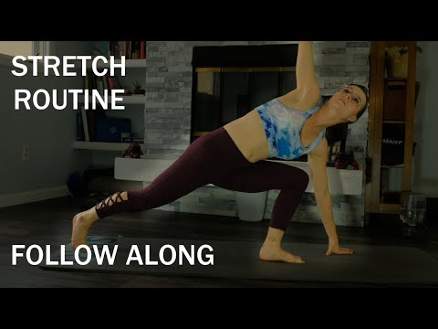4 Min || Follow Along Stretch Routine || No equipment