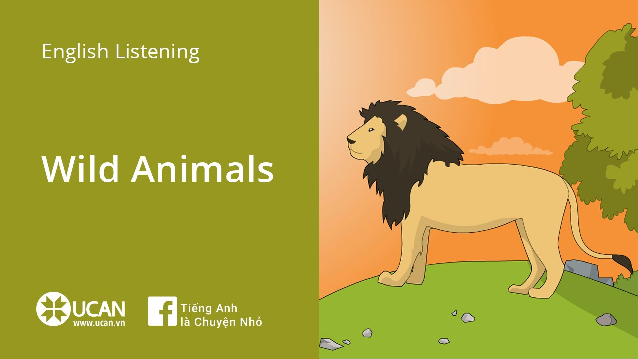 Resultat d'imatges de WILD ANIMALS LEARNENGLISH KIDS