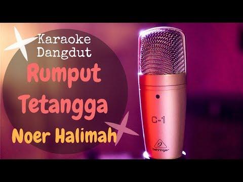karaoke-dangdut-rumput-tetangga---noer-halimah-||-karaoke-no-vocal