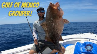 Catching Big Grouper in the Gulf Of Mexico - Slow Pitch Jigging in the Gulf!