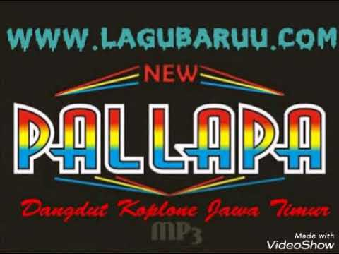 album terbaru new palapa, BOJO GALAK mp3