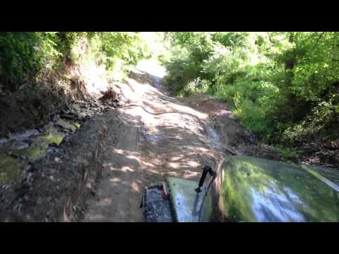 climbing Left Fork of Lick Creek in Wayne County, West Virginia
