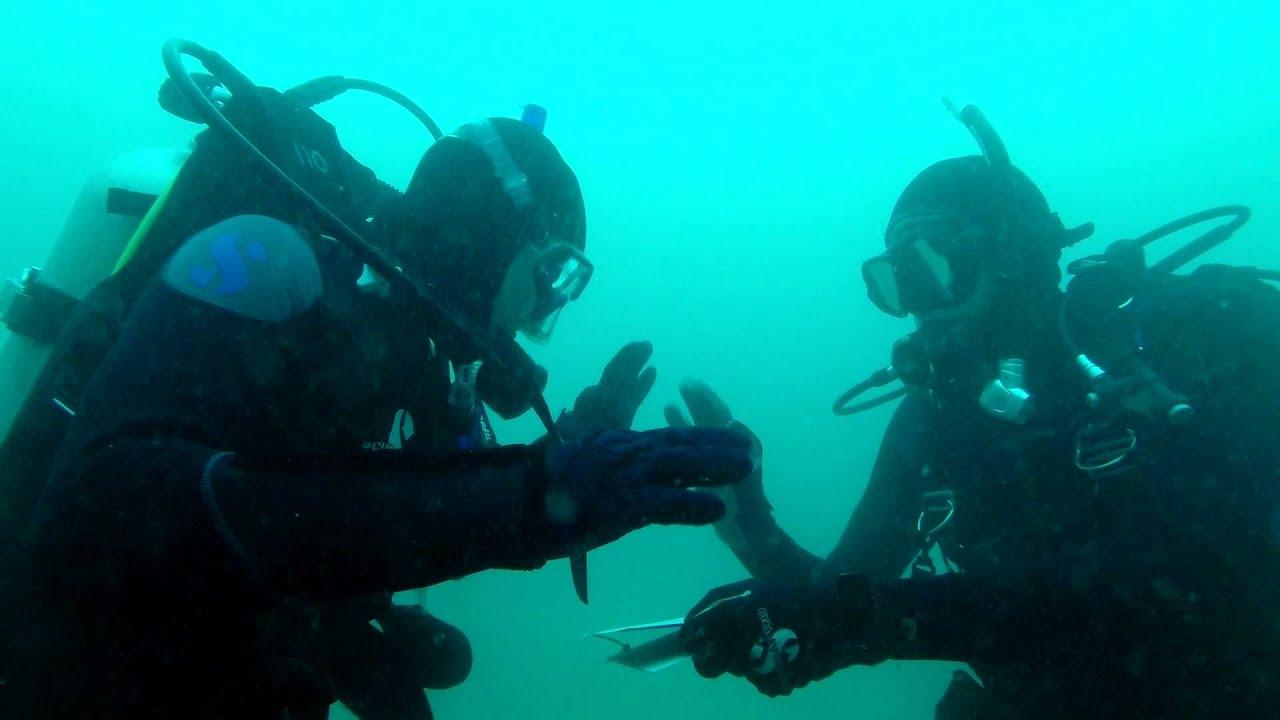 Scuba Diving Certification Process Youtube