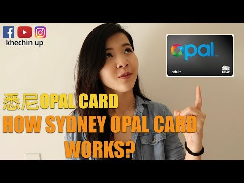 How Sydney Opal Card Works?⎜怎么使用悉尼Opal Card⎜khechinup
