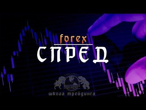 Комиссии и спреды на рынке Форекс