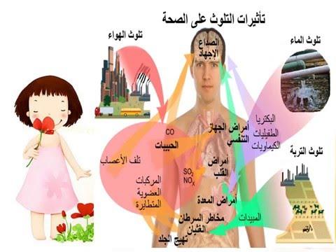 فيلم انجري بيرد مدبلج عربي