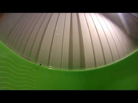 Как муха садится на потолок видео