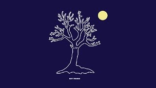 Roy Woods - Drama feat. Drake (Audio)