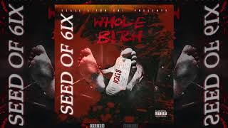 "Seed of 6ix ""Whole B*tch"" Prod by DJ Paul & Locodunit [Audio]"
