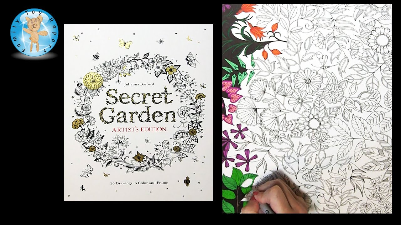Secret Garden Artists Edition By Johanna Basford Adult Coloring Book Dragonfly