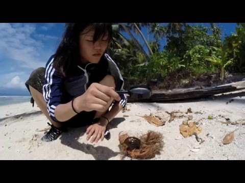 The first castaway girl: Making her first fire 3 of 6
