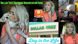 DITL-Dollar Tree Shopping and Haul-Chewable Coffee whaaaat?