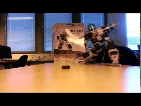 Bioloid Robot Project - Juti