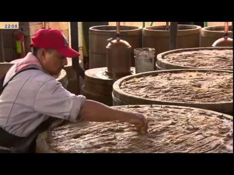 hd   Doku Mexikos Zapotekisches Erbe   Unterwegs Auf Der Mezcal route
