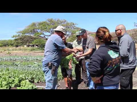 Down to Earth Farm Visits: Ma'o Organic Farms (Oahu)