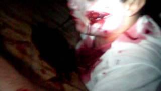 Zomvideo 001