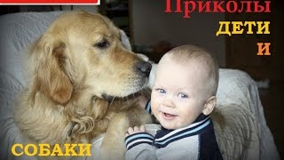Дети и собаки)) Смотреть всем))) Приколы...