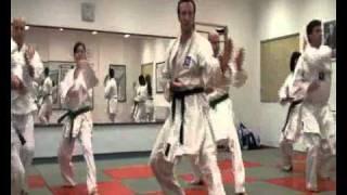 Karate Kokutsu Dachi - Shuto Uke - Mae Ashi Geri - Gyaku Zuki
