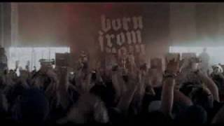 """Born From Pain - """"The New Hate"""" (WFF08)"""