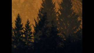 If These Trees Could Talk - The Flames Of Herostratus