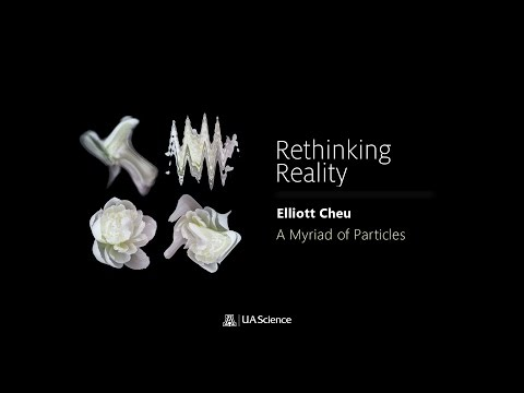 Rethinking Reality: A Myriad of Particles