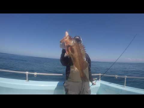 Monterey rockfish fishing