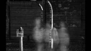 The Ghosts of Auschwitz and Birkenau by Cole Thompson