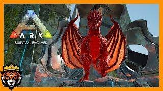 Ark survival evolved primal evolved