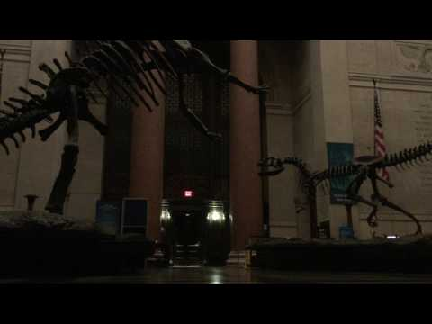 The Real Night at the Museum, American Museum of Natural History  (May. 2017)