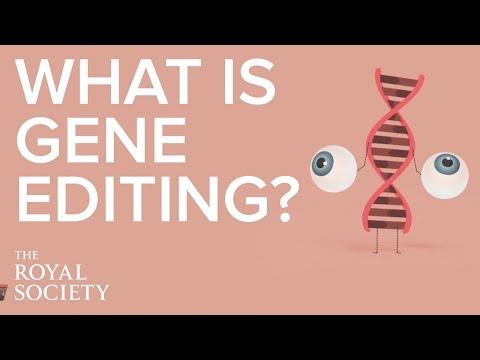 What is gene editing and how does it work?