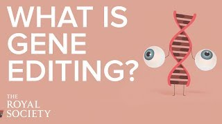 Gene editing allows scientists to change sequences by adding, replacing or removing sections of dna. this animation explains how technology works, ...