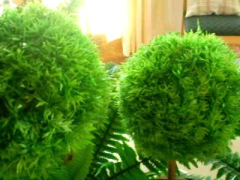 Florerias plantas artificiales decorativas ojo youtube for Plantas de interior artificiales