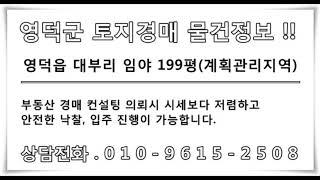 영덕토지경매 영덕군 임야 매매/대부리 계획관리지역 땅