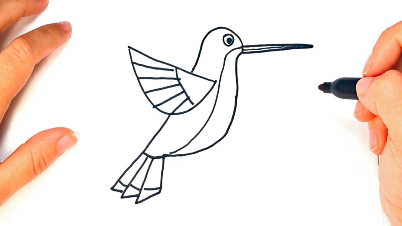 Como dibujar un Colibri paso a paso | Dibujo facil de Colibri - YouTube