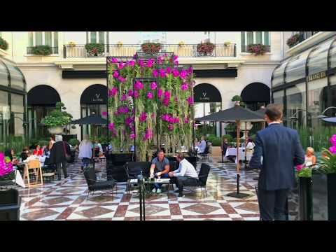 L'Orangerie / Le Cinq at Four Seasons George V Paris