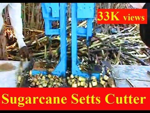 Sugar Cane Seed Cutter Om Sakthi