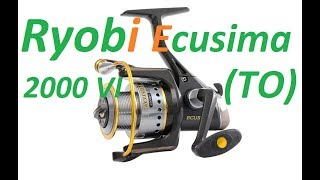 Ryobi ECUSIMA 2000VI (Полная разборка и ТО)