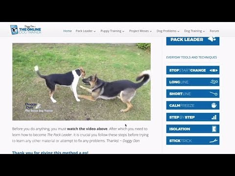 doggy-dans-online-dog-trainer-review-and-members-area